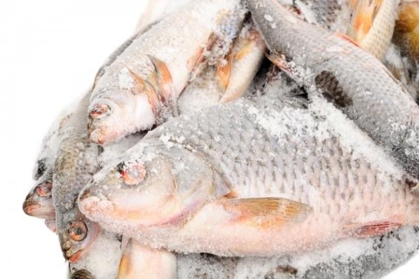 Замерзшая рыба