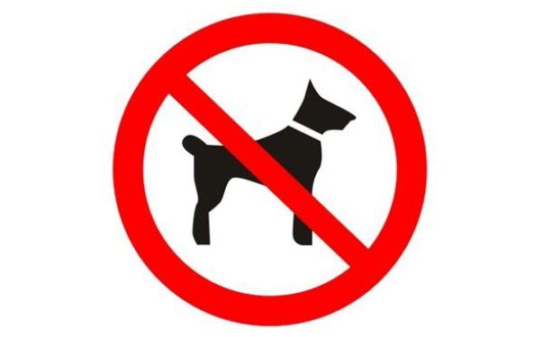 Запрет на собак